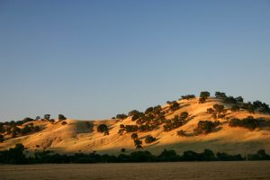 Hills of Vacaville